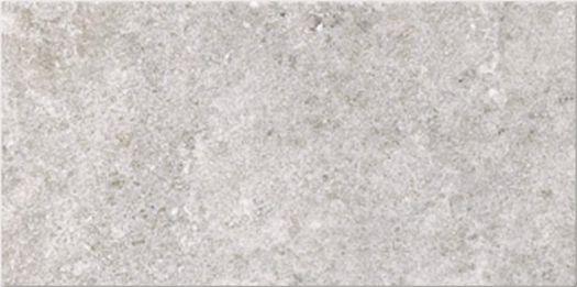 Stoney Grey 100x200