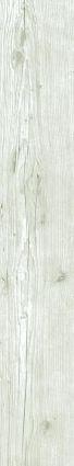 Sequoia Limed Oak (White) Wood Effect Tile