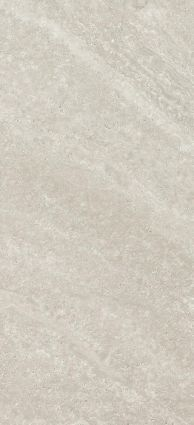 Echo Light Grey Gloss 250x500
