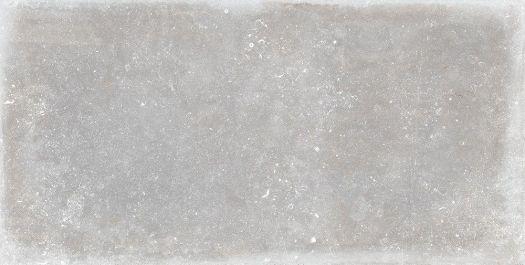Aneto Grey Matt 600x1200