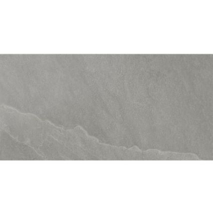 Seed Grey Ceramic Wall Tile 250x500