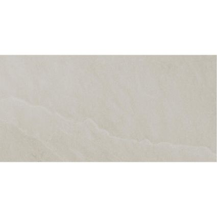 Seed White Ceramic Wall Tile 250x500
