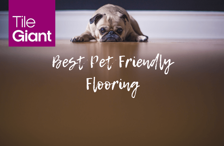 4 Ways Tiles Are The Best Pet Friendly Flooring Solution